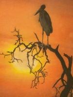 birdsunset