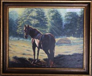 backlit horse web