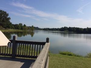 freeman lake paintout 8 1017 view