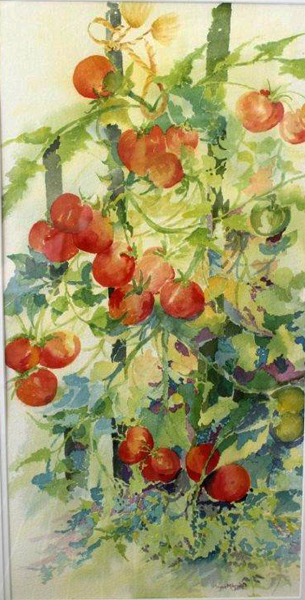 Tomatoes, watercolor