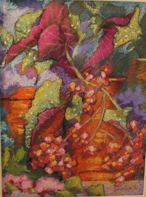 Begonia, pastel