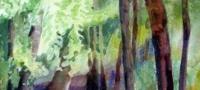 Trees, watercolor